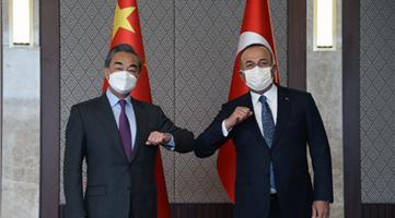 王毅:中东六国欢迎中国在中东事务发挥更大作用