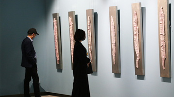 趙潔之魚,鯤化為鵬——趙潔個展于河北美術館舉行
