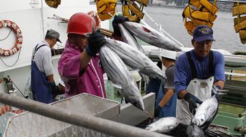 ?福岛核废水若排放后患无穷 专家提出处理建议