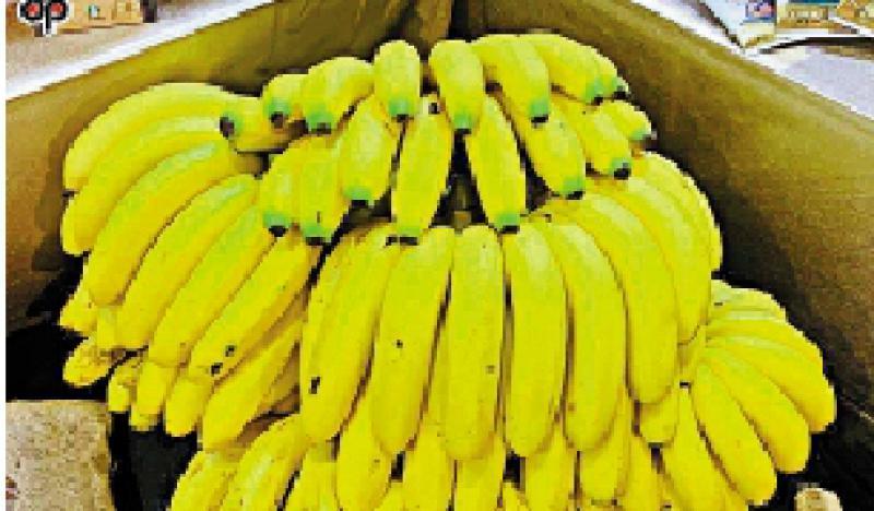 ?台蕉销日又验出农藥超标