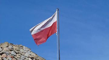 """波兰外交部宣布3名俄罗斯外交官为""""不受欢迎的人"""""""