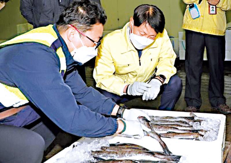 验出一贝克就退回 韩严控日产海鲜