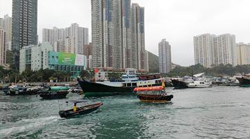避风塘污染追源1丨香港仔避风塘大肠杆菌超标3115倍