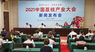 2021中国荔枝产业大会定于5月19—20日在茂名召开