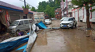 湖北随县柳林镇洪灾责任人受到严肃处理 县委书记被免职