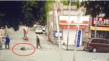 南通一街道城管协管员将老人拎起重摔 已被行拘