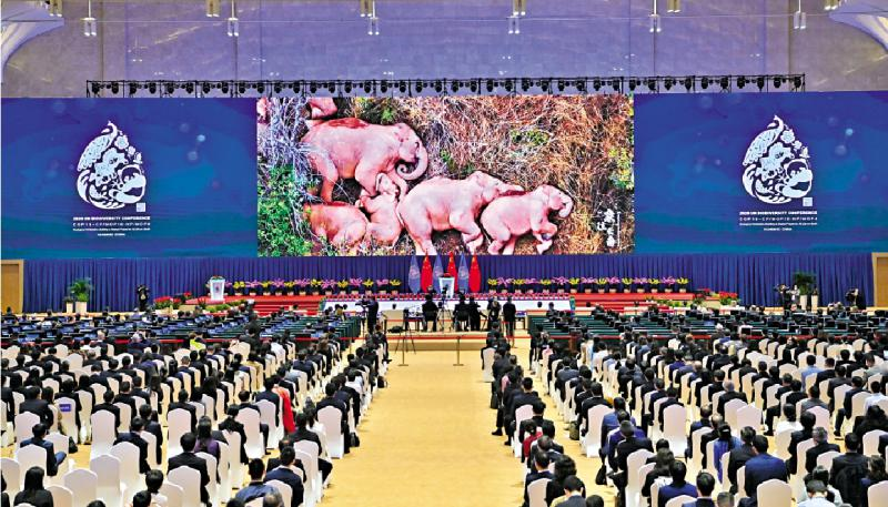 联合国《生物多样性公约》大会 习近平今视频致辞