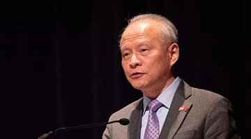 崔天凯批美国操弄台湾问题:我们不会让它得逞