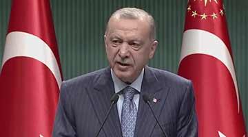 土耳其总统改口称不会驱逐美等10国大使
