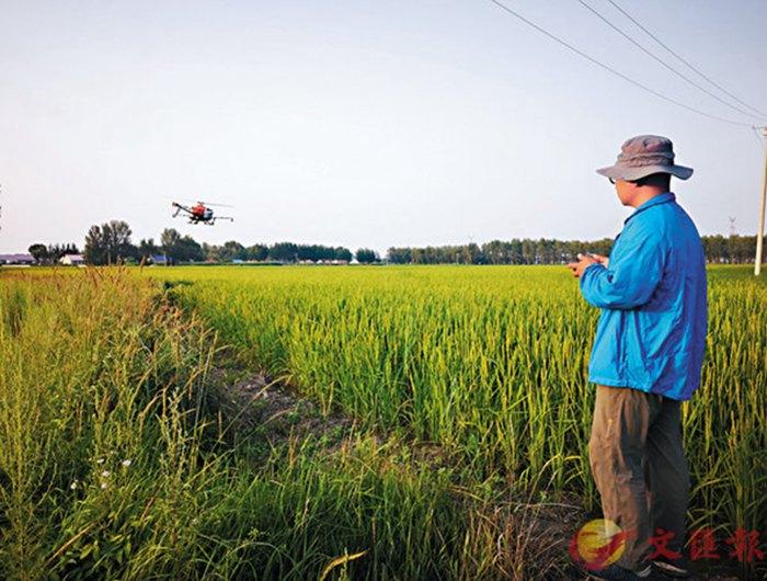科技为农业插上翅膀无人机喷洒农药效率提高90倍