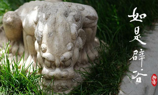 「如是辟谷禅修」——二十一期杭州纪实,二十二期预报名开启
